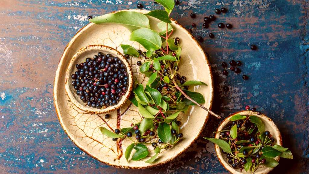 autre petit fruit - leaderplant