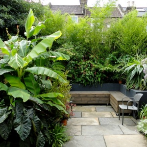 balcon ombre jungle paris