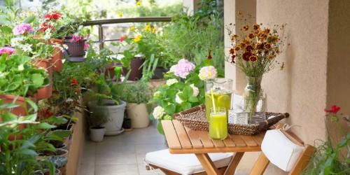 balcon ombre paris fleuri