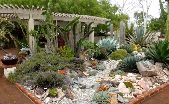 Plante de rocailles - Vente de plantes pour rocaille ...