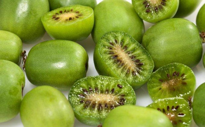 LES PETITS FRUITS ÉNERGIE