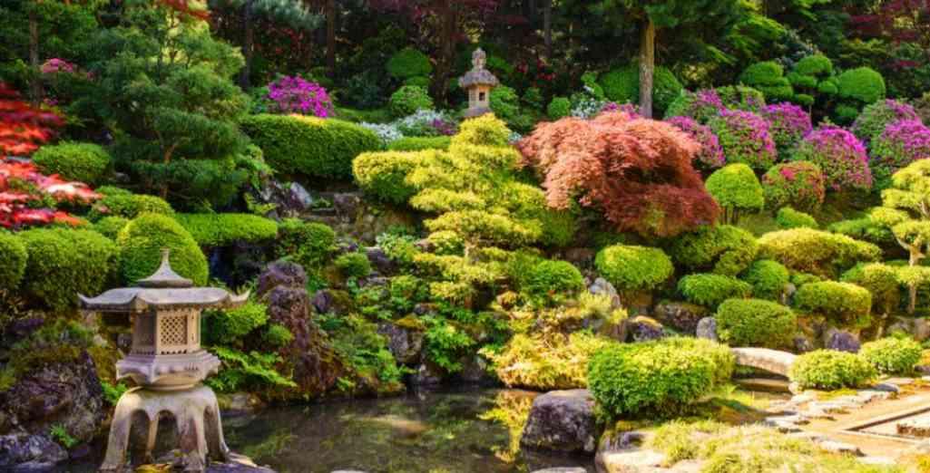 Aménagement et Plantes pour un Jardin Zen / Jardin Japonais réussi !
