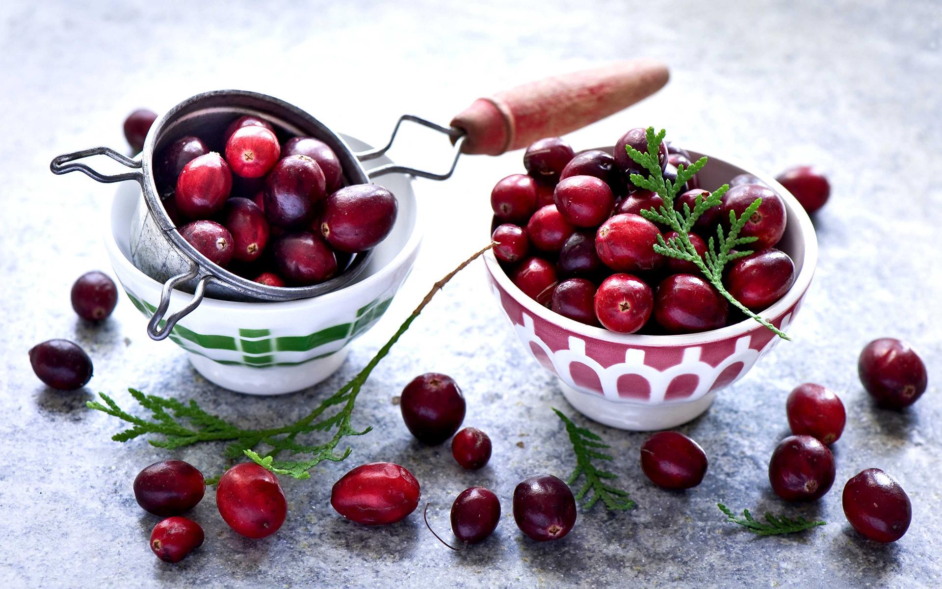 cranberry - leaderplant