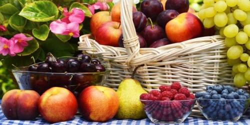 balcon ombre paris fruitiers