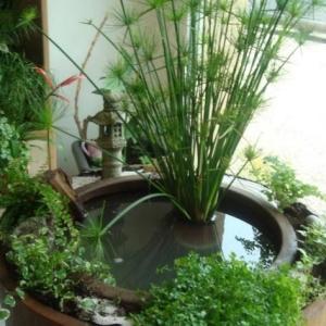 balcon ombre paris mini bassin