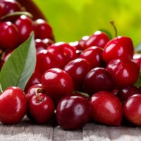 Cerisier nain Cherry Me - Fruit Me ®