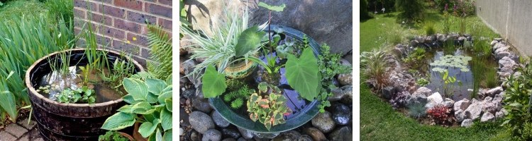 Jardin Aquatique pour terrasse et balcon