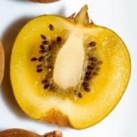 Kiwi Jaune 'Minkigold' ®