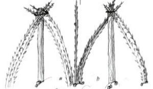 Planter les framboisiers conseils petits fruits leaderplant - Ou planter un framboisier ...