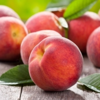 Pêcher nain Peach Me Red - Fruit Me ®