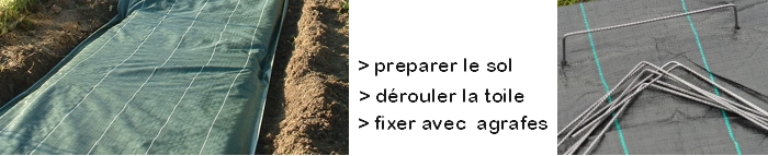 fixer toile de paillage